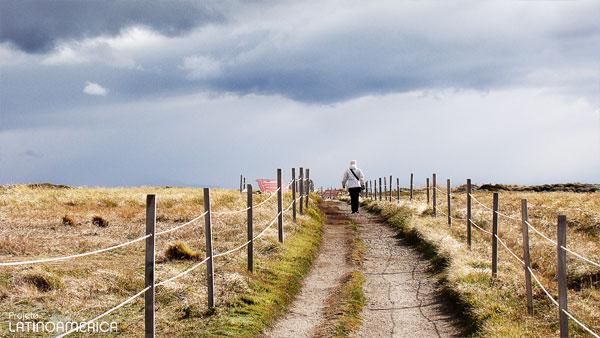 Caminho a pinguinera, Punta Arenas