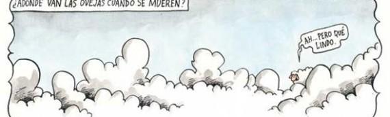 Liniers: Para onde vão as ovelhas quando morrem?