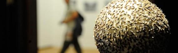 Novo espaço cultural do Rio expõe artistas colombianos