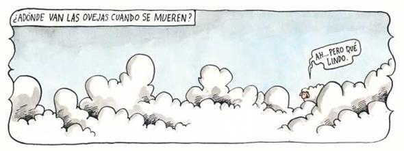 Ovelhas, Liniers